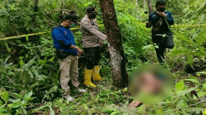 Mayat Pria Hanya Pakai Celana Dalam Ditemukan di Kebun Karet Kabupaten PALI, Diduga Tewas Ditembak