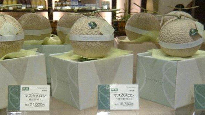 Melon mahal, harganya 21.000 yen per buah yang dijual di sebuah toko buah di Tokyo.