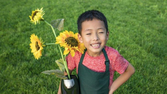 Mudah Dilakukan, Begini Caranya Menanam Bunga Matahari di Pot