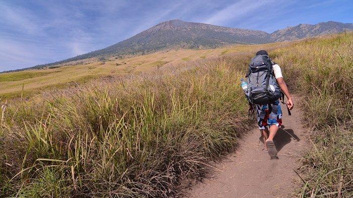 Seorang pendaki tengah menyusuri padang sabana di Kecamatan Sembalun, Lombok Timur. Jalur Sembalun terkenal dengan padang sabana dan bukit-bukit yang indah sebelum mencapai ke punggung Gunung Rinjani, yakni Plawangan-Sembalun. Diketahui, Gunung Rinjani dengan ketinggian 3.726 mdpl adalah gunung tertinggi ke-3 di Indonesia setelah Cartenz Pyramid di Papua dan Gunung Kerinci di Sumatera