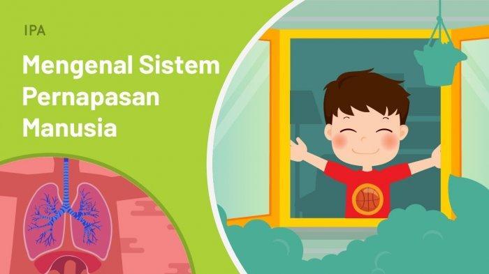 Mengenal Sistem Pernapasan Manusia | IPA | Kelas 5 SD