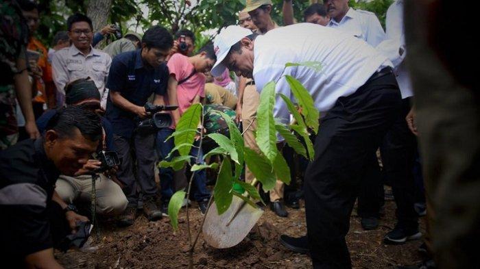 Mentan Amran Sulaiman Dorong Hilirisasi Industri Kakao dan Kopi di Luwu dan Toraja
