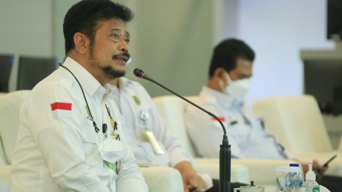 Ratusan Hektar Sawah di Manggarai Barat Kekeringan, Kementan Ingatkan AUTP