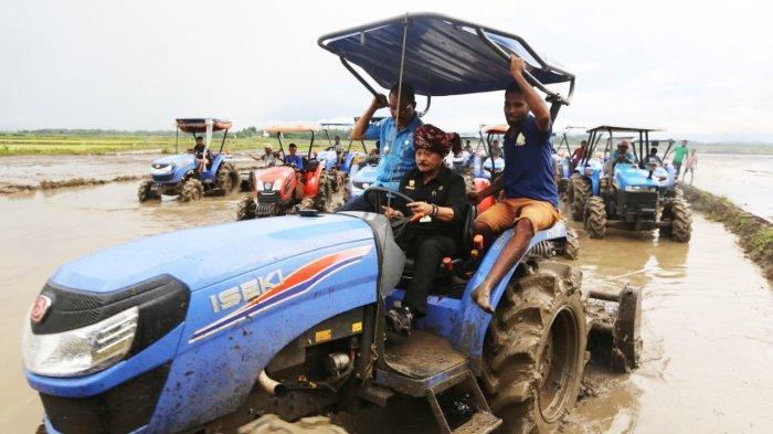 Diguyur Hujan, Mentan SYL Tinjau Food Estate Sumba Tengah