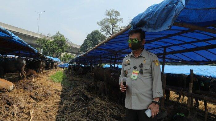 Fokus Garap Pertanian, Alsintan Jadi Pengungkit Peningkatan Produktivitas Pertanian Sumatera Barat