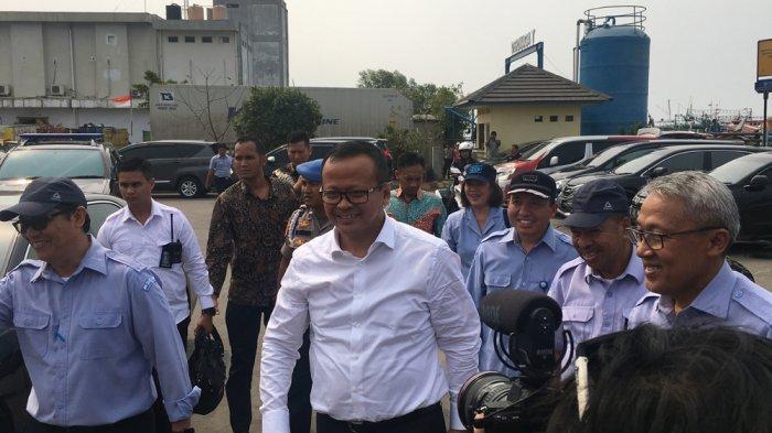 Edhy Prabowo Sebut Wacana Ekspor Benih Lobster Masih Terus Dikaji, Banyak Penyelundupan