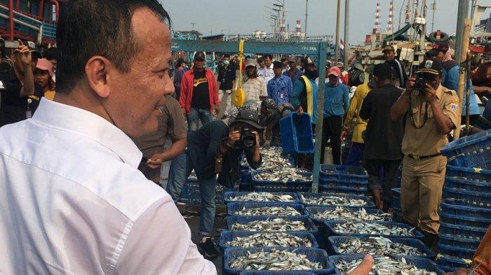 100 Hari Jokowi-Maruf, Gebrakan Menteri KKP: Pengangkatan 22 Pejabat hingga Ekspor Benih Lobster