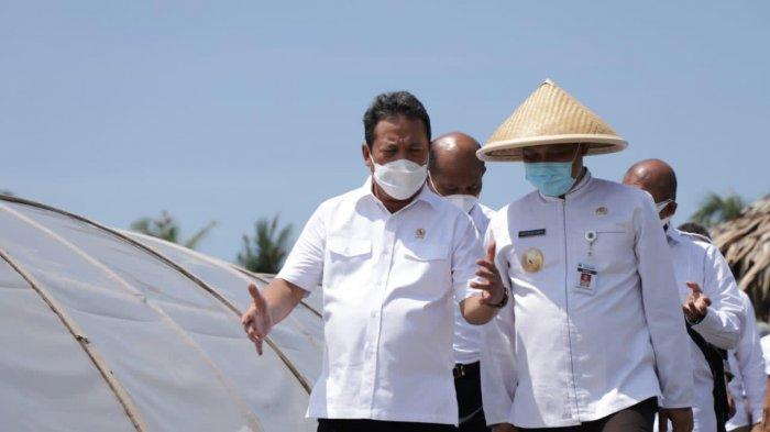 Supaya Terhindar dari Tengkulak, Menteri Trenggono Dorong Penjualan Garam Lewat Saluran Digital