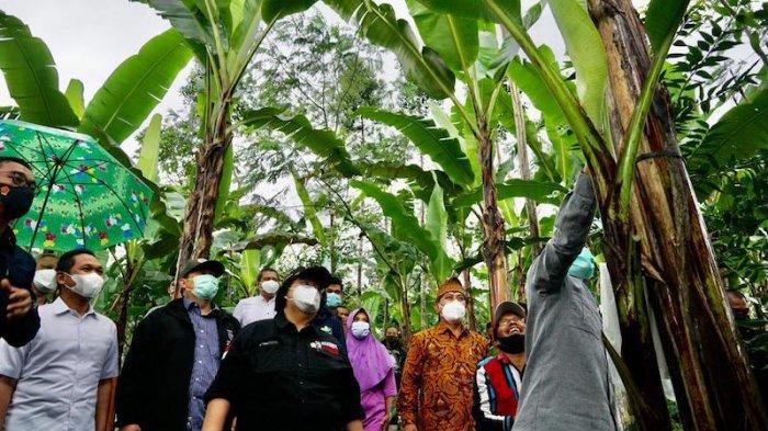 Lumajang jadi Lokasi Pilot Project Model Pengembangan Wilayah Terpadu Basis Hutan Sosial