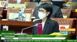 Menlu Retno Sebut Indonesia Bisa Dapat Vaksin Covid-19 Gratishingga 20% dari Covax