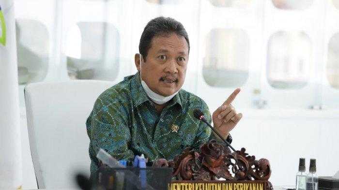 KKP Fokus Tingkatkan Produktivitas Perikanan Budidaya untuk Capai Ekonomi Biru