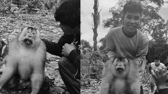 Berita Viral Pemuda Ini Berburu Monyet, Diburu dengan Gigitan Anjing, Dimasak, Lalu Disantap