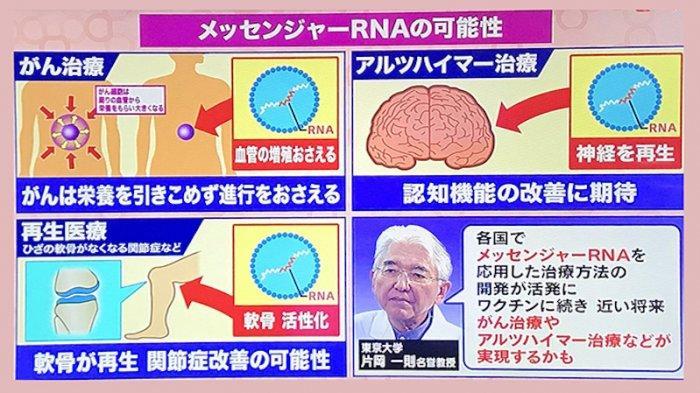 Profesor Jepang: Penggunaan mRNA Dalam Vaksin Anti Corona Bisa Sembuhkan Berbagai Penyakit