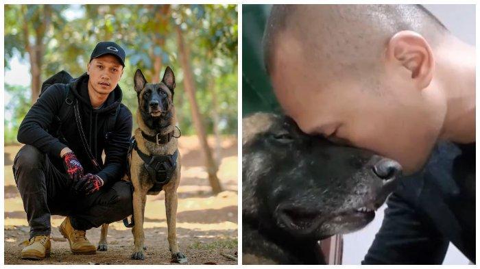 Anjing Sparta Belgian Malinois Mati, Bima Aryo Sempat Ungkap Tak Ingin Punya Hewan Peliharaan Lagi