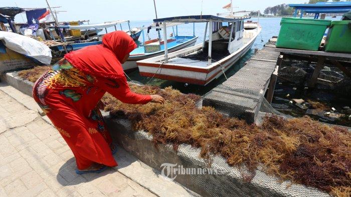 9 Produk Unggulan UKM Indonesia Miliki Daya Saing Global, Dapat Diekspor ke AS Hingga Eropa