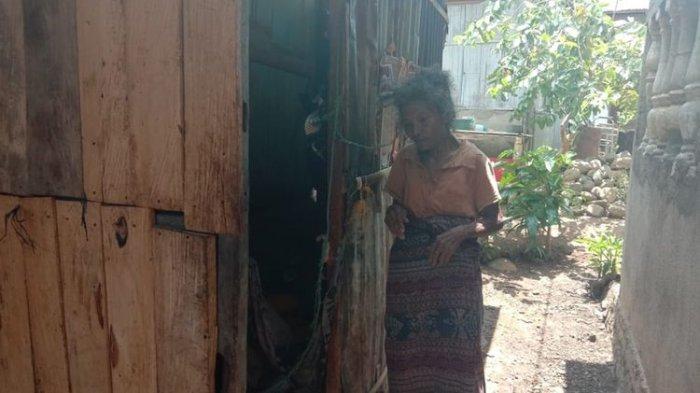 Derita Nenek Theresia, Hidup Sebatang Kara, Tinggal di Gubuk Bekas Toilet Warga Tanpa Listrik