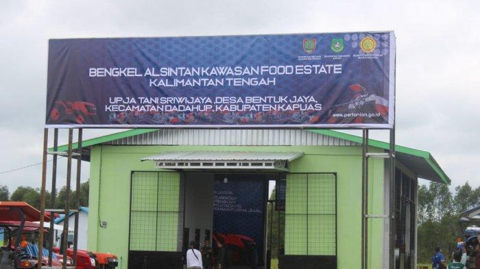 Eks Proyek Lahan Gambut Seluas 1 juta Hektar pada 1995 Jadi Lokasi Pembangunan Lumbung Pangan
