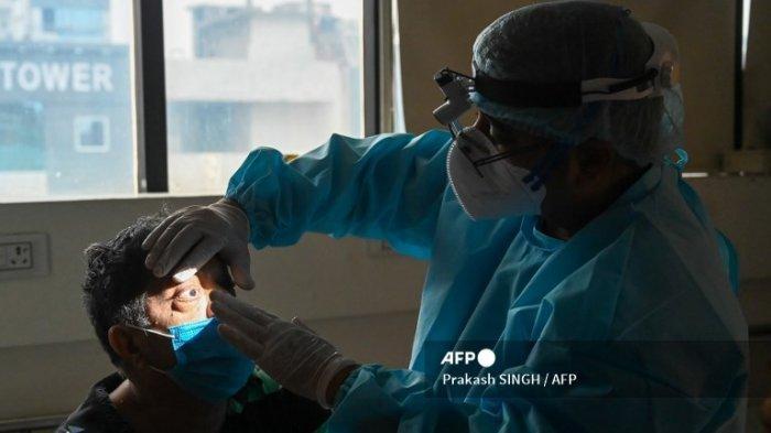 Kasus Pertama Infeksi Jamur Hitam Ditemukan pada Pasien Covid-19 di Luar India