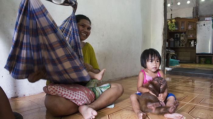 Selama Dua Tahun Keluarga Dahlan Tinggal Bersama Orangutan Joss - orangutan-joss_20160107_171639.jpg