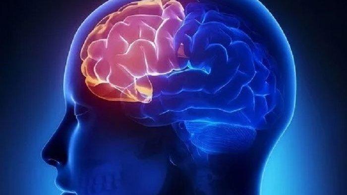 Menurut Studi, Otak Manusia Masih Bekerja Selama Beberapa Jam Setelah Kita Mati
