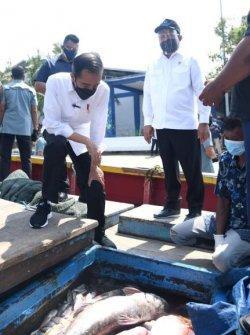 Presiden Jokowi Terima Keluhan Pendangkalan Pelabuhan dari Nelayan Lamongan