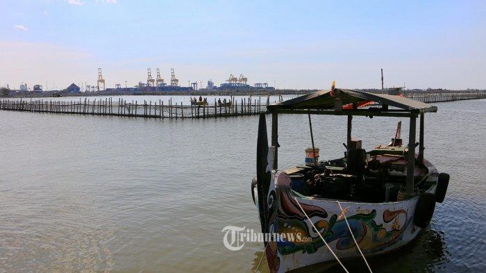 Jokowi Minta Kementerian/Lembaga Perkuat Ekosistem Korporasi Petani dan Nelayan Lewat Regulasi
