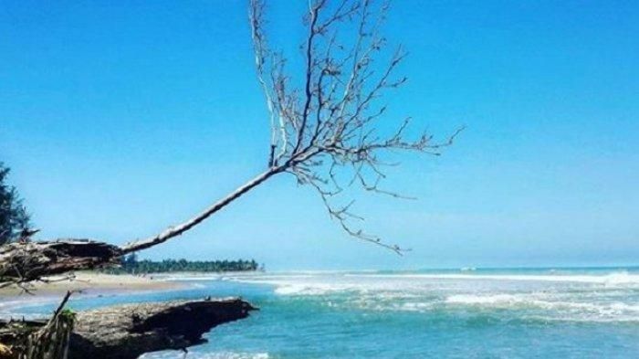 Pantai Teluk Sepang Tempat Wisata Di Bengkulu Untuk Liburan Akhir Pekan Tribunnews Com Mobile