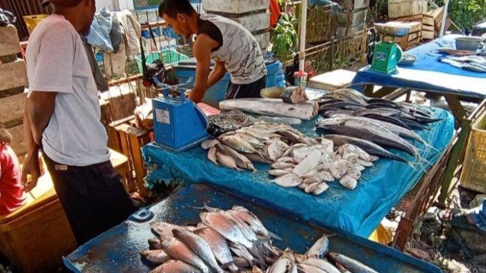 Pasokan Ikan Dinyatakan Aman untuk Penuhi Kebutuhan Ramadan, Pasar Ikan Murah Siap Digelar