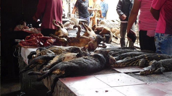 Kegiatan di pasar hewan liar Langowan, Sulawesi Utara masih berjalan normal meski desakan penutupan pasar terus mengintai.