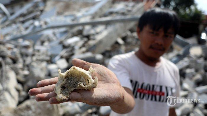 Ekspor Sarang Burung Walet Bisa Meningkat Signifikan, Regulasi Harus Disederhanakan