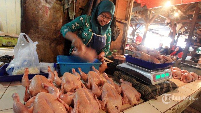 Harga Daging Ayam Meroket, KPPU Juga Tengarai Ada Permainan Kartel