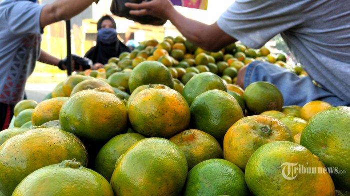 Pedagang buah jeruk melayani pembeli di Jalan Bojongsayang, Desa Cangkuang Wetan, Kecamatan Dayeuhkolot, Kabupaten Bandung, Jawa Barat, Rabu (27/5/2020). Selepas Lebaran, penjualan jeruk lokal ini meningkat, sehari bisa habis terjual sekitar 10 hingga 12 peti dengan harga jual Rp 7.500-10.000 per kilogram. Tribun Jabar/Gani Kurniawan
