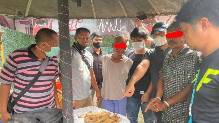 Dua pria diamankan. Mereka diduga melakukan praktik perdagangan bagian tubuh Harimau Sumatera di Pasaman Barat, Provinsi Sumatera Barat (Sumbar), Jumat (20/8/2021).