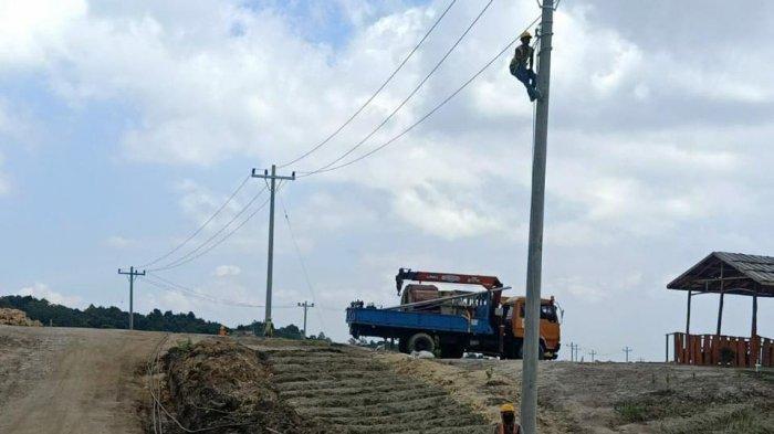 Dukung Kemandirian Pangan, PLN Bangun Jaringan Listrik di Food Estate Sumut