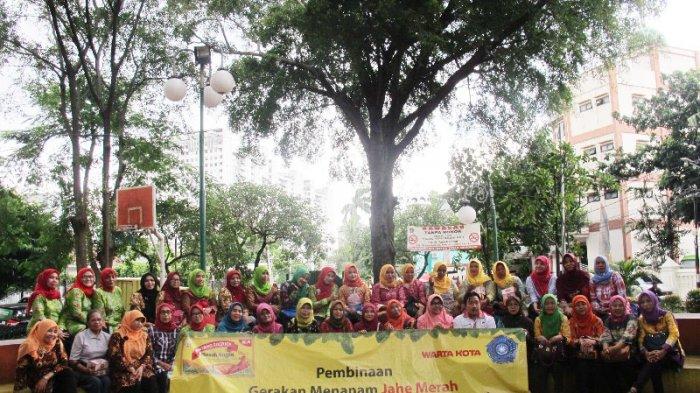 Bejo Bintang Toedjoe Tutup Gerakan Bina Tanam Jahe Merah di RPTRA Amir Hamzah