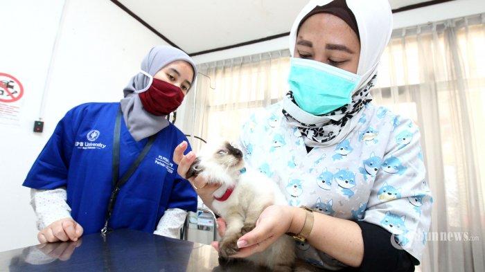Masuk Daftar Potensial Produsen Vaksin Covid-19, CEPI Mulai Lakukan Uji Kelayakan Pada Bio Farma