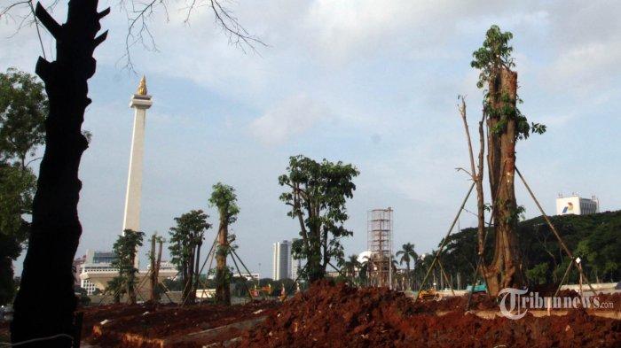 Jawaban Sekda DKI Jakarta Soal Keberadaan Pohon yang Ditebang di Monas: Tak Ada Nilainya Dijual