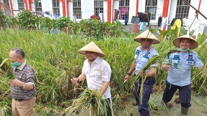 Masih Ingat Eks Ketua DPR RI Setya Novanto? Kini Tampil Beda, Bawa Sabit hingga Topi Caping Petani