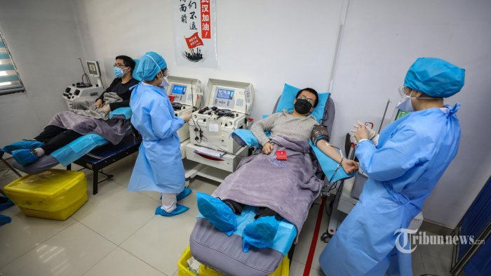 Foto ini diambil pada Selasa (18/02/2020) Seorang dokter sedang menangani pasien yang telah pulih dari infeksi virus corona (COVID-19) menyumbangkan plasma di Wuhan di Hubei, China. Sebelumnya Pejabat kesehatan China pada 17 Februari kemarin mendesak pasien yang telah pulih dari coronavirus untuk menyumbangkan darah sehingga plasma dapat diekstraksi untuk mengobati orang lain yang sakit kritis. (STR/AFP/China OUT)