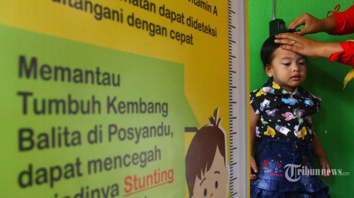 Kader Posyandu mengukur tinggi badan balita dalam pemeriksaan rutin satu bulan sekali dalam rangka pencegahan stunting, di Taman Posyandu Delima, RW 03 Kelurahan Madyopuro, Kota Malang, Kamis (19/12/2019).