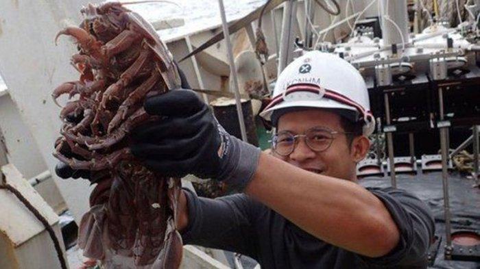 Peneliti LIPI Temukan Kecoak Raksasa di Selat Sunda, Ini Penampakannya