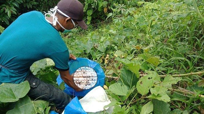 Polisi Temukan Bagian Kepala Tabrani di dalam Jurang, Terpisah 4 Km dari Tubuhnya
