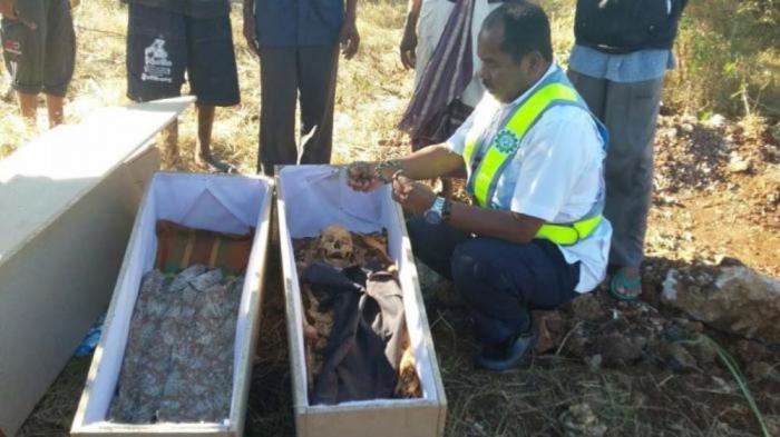 Pembongkaran Makam Keluarga Taumboy Diakhiri Ritual Adat Pemotongan Sapi