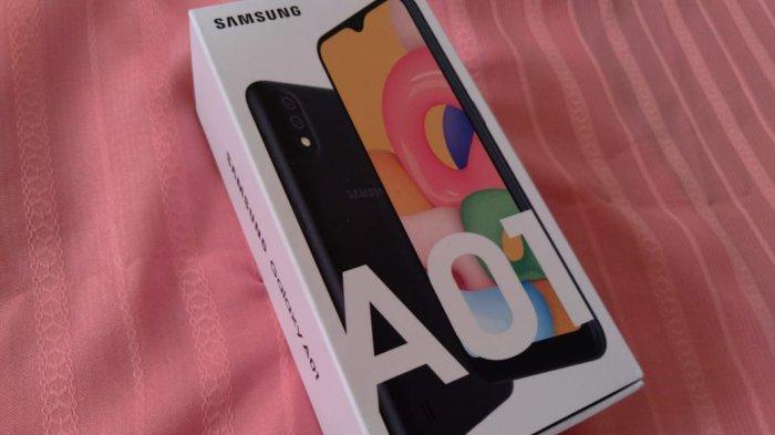 Penggunaan efek Pro di kamera belakang Samsung Galaxy A01.