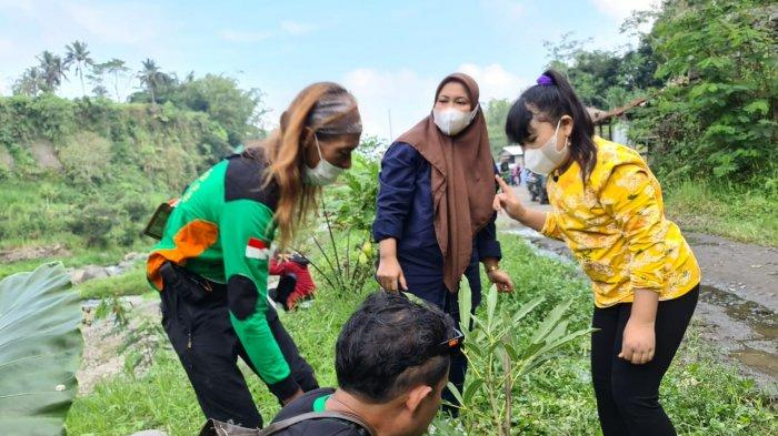 Forum Merapi Merbabu Hijau Komitmen Jaga Kelestarian Alam di Sekitar Wilayah Gunung Merapi