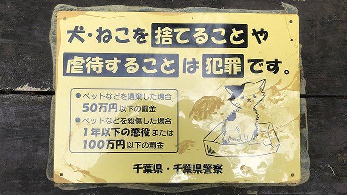 Penjara 1 Tahun dan atau Denda 1 Juta Yen Menanti Bagi Pembunuh Hewan Peliharaan di Jepang