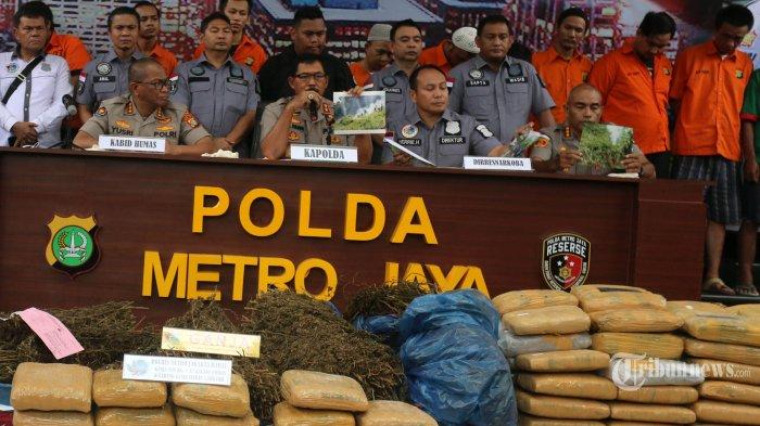Puluhan Kilogram Ganja Diselipkan di Truk Pengangkut Duren, Polisi Temukan 5 Hektare Ladang Ganja