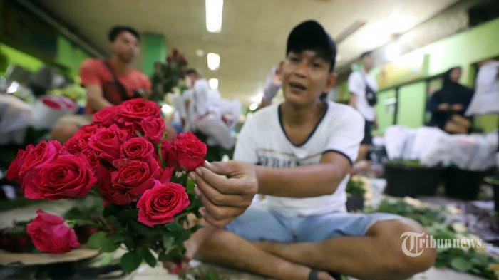 Penjual saat merapikan bunga mawar di pusat penjualan bunga Rawa Belong, Jakarta Barat, Rabu (12/2/2020). Menjelang hari kasih sayang atau Valentine tahun 2020 yang jatuh tiap 14 Februari permintaan bunga mawar di Pasar Rawa Belong mengalami peningkatan, pada hari biasa harga bunga mawar Rp 15.000 per tangkai dan Rp 40.000 per paket menjelang hari valentine harganya mencapai Rp 25.000 per tangkai, dan Rp 100.000 per paket. Tribunnews/Jeprima