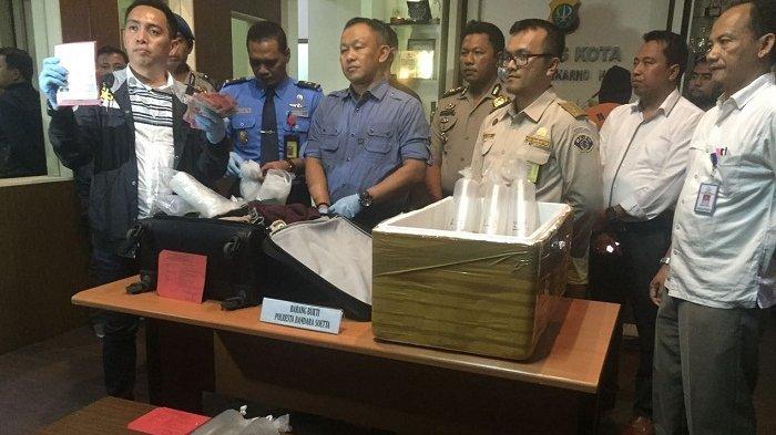 Petugas Bandara Soekarno-Hatta berhasil menggagalkan rencana penyelundupan Bibit Lobster senilai Rp 1,6 Miliar ke Singapura, Kamis (24/11/2016).