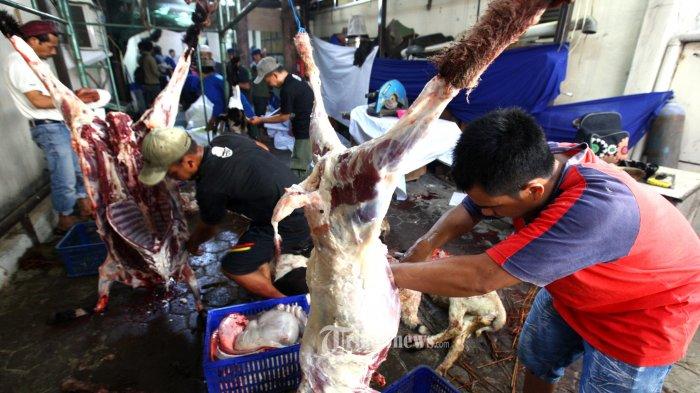 Sejumlah panitia kurban menguliti domba yang baru disembelih pada Iduladha 1440 H di halaman belakang Masjid Raya Bandung Provinsi Jawa Barat, Kota Bandung, Minggu (11/8/2019). Titipan hewan kurban yang disembelih di Masjid Raya Bandung berjumlah 24 ekor, terdiri dari 10 ekor sapi dan 14 ekor domba, satu diantaranya satu ekor sapi limosin sumbangan dari Presiden Jokowi. (TRIBUN JABAR/GANI KURNIAWAN)
